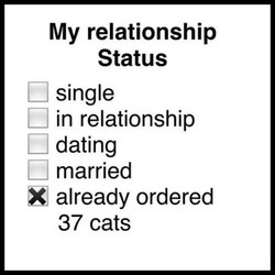 My relationship 