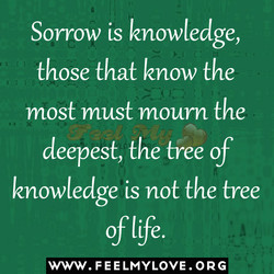 Sorrow is knowledge, 