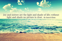 Joy and sorrow are the light and shade of life; without 