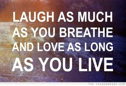 LAUGH AS MUCH 