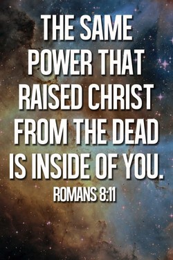 THE SAME 