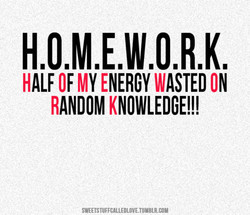 H.O.M.E.W.O.R.K. 