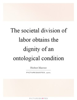 The societal division of 
