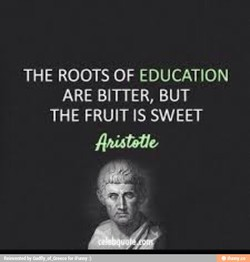 THE ROOTS OF EDUCATION 