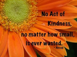 No Act of 