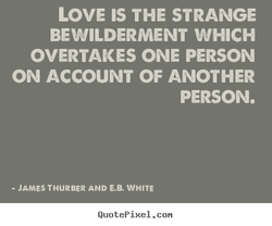 LOVE IS THE STRANGE 