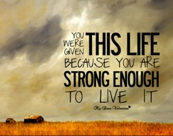 THIS Ll 