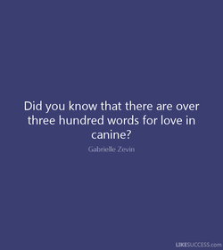 Did you know that there are over 