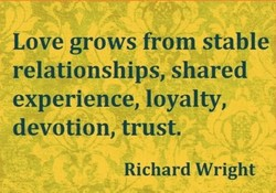 Love grows from stable 