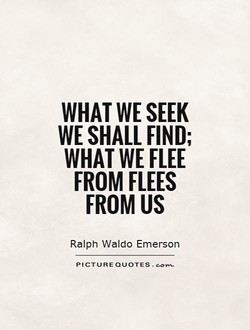 WHAT WE SEEK 