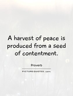 A harvest of peace is 