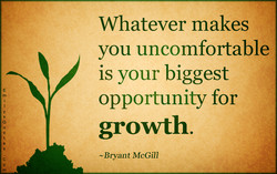 Whatever makes 