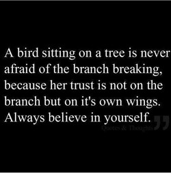A bird sitting on a tree is never 