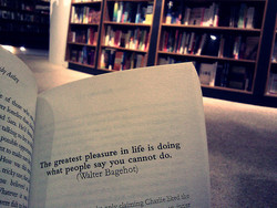 The greatest pleasure in life is doing 