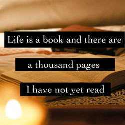 Life is a book and there are 