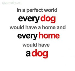 In a perfect world 