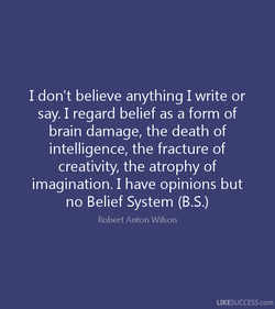 I don't believe anything I write or 