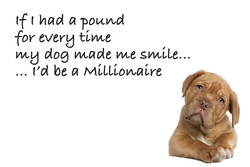 (f had a pouwd 
