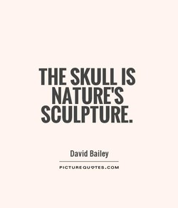 THE SKULL IS 